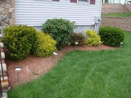 landscape excellent simple backyard landscaping cool green
