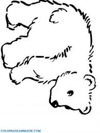 printable zoo animals coloring pages kids ccm