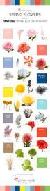Pantone Color 2017 Spring 2016 Spring Flowers Pantone Inspiration Flower Muse Blog