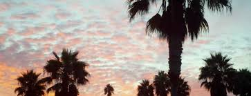 The 15 Best Places For by The 15 Best Places For Bonfires In San Diego