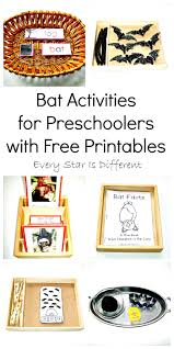bat activities for preschoolers with free printables every star