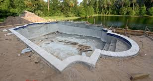 Mountain Lake Pool Design by Wiseman Pools Building Unique Pools