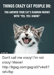 Memes About Crazy People - 25 best memes about crazy cat people crazy cat people memes