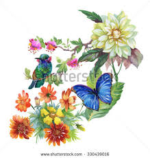 Flowers For Birds And Butterflies - meadow flowers tropical birds butterflies watercolor stock