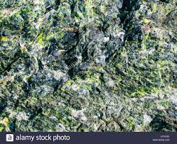 Beautiful Texture The Beautiful Texture Of The Rough Stone With Emerald Green Stock