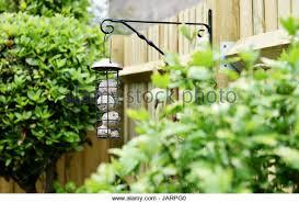 british garden birds feeders stock photos u0026 british garden birds