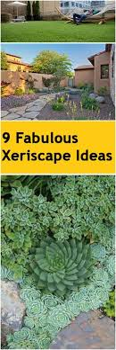 Backyard Xeriscape Ideas 9 Fabulous Xeriscape Ideas Bless My Weeds