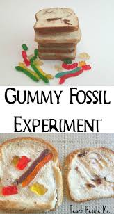 171 best science experiments images on pinterest science