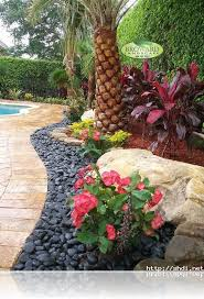 Tropical Backyard Design Ideas Tropical Front Yard Landscaping Ideas With Palm Trees This For