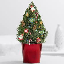 small decorated trees delivered pre lit silver white