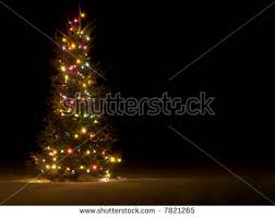 christmas tree lights outside stock images royalty free images