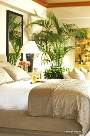 tropical bedroom decorating ideas tropical bedroom decorating ideas tropical bedroom ideas with