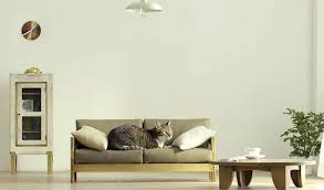 sofa that cats won t scratch furniture for cats catskill furniture makers kingston ny izproxy info