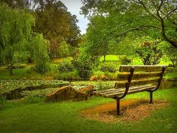 Benches In Park - 217 best for you always and forever images on pinterest