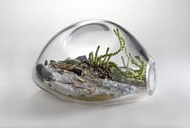 remarkable blown glass terrarium containers 12 in best interior