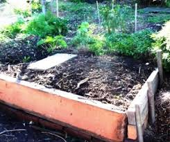 building a raised bed vegetable garden building raised beds