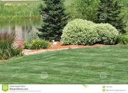 backyard landscaping royalty free stock photos image 16431228