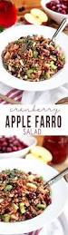 Cranberry For Thanksgiving Fresh Cranberry Apple Farro Salad Some The Wiser