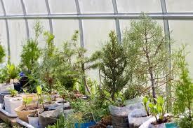 studium garten und landschaftsbau garten und landschaftsbau studium beste images oder dkz jpg am
