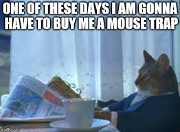 Cat Trap Meme - a cat in a cartoon once said this imgflip