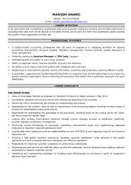 professional highlights resume examples manish anand resume v1
