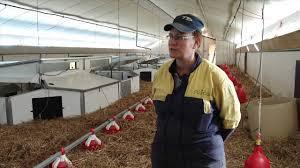 chambre agriculture loir et cher bâtiments avicoles basse consommation énergétique une première