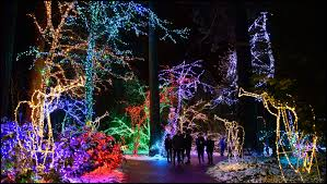 Lights At The National Zoo by Christmas Parties The National Sanctuary Of Our Sorrowful Mother