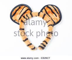 tiger headband closeup of beautiful white tiger on background stock photo