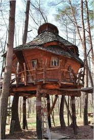 Amazing Tree Houses by 439 Best Treehouses Images On Pinterest Treehouses Architecture