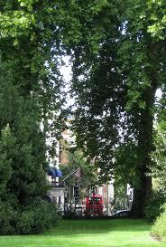 c b i d home decor and design english gardens and more