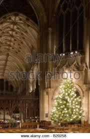 ely cathedral christmas tree stock photo royalty free image