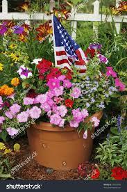 Pot Flag Flower Pot Beautiful Flowers American Flag Stock Photo 15426958