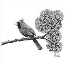 21 ballpoint pen drawings art ideas design trends premium