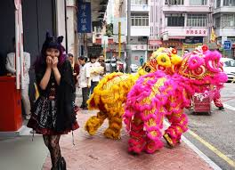 lion dancer book lion lanterns hong kong new year celebrations at