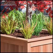 Redwood Planter Boxes eureka large redwood planters redwood planter boxes