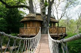 Tree Houses Around The World 11 Of The Best Tree House Hotels Around The World Sporteluxe