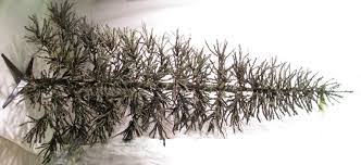 tree rustic german twig tree 7 ft