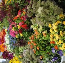 farm fresh flowers fresh cut flower farm up the gardener s workshop