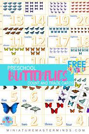 preschool butterflies count and trace flash cards 1 20 u2013 miniature