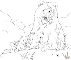 grizzly bear mother and cub clipart collection