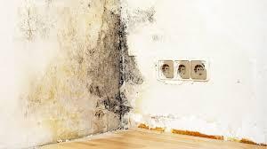 mietminderung bei schimmel im schlafzimmer schimmel in der mietwohnung was tun wohnen verbraucher wdr