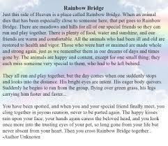 amazon com pet remembrance rainbow bridge photo ornament pet