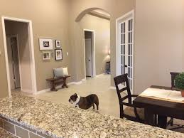 Home Interior Pic by Best 20 Beige Paint Colors Ideas On Pinterest Beige Floor Paint