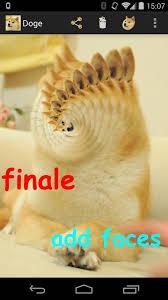 Funny Doge Memes - 47 hilarious doge memes images jokes gif photos picsmine