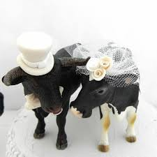black bull and holstein cow cake topper for texas ranch or