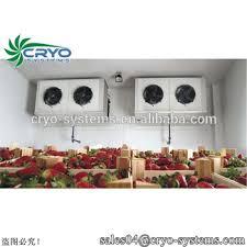 chambre froide traduction légumes réfrigérateur de stockage de fruits chambre froide