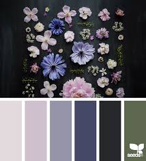color collect flora design seeds and color inspiration