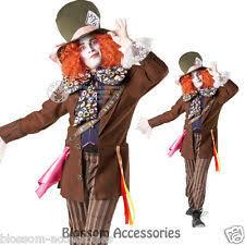 Mad Hatter Halloween Costume Men Dress Costumes Men Mad Hatter Ebay