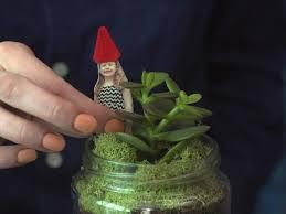 how to make a diy mason jar terrarium