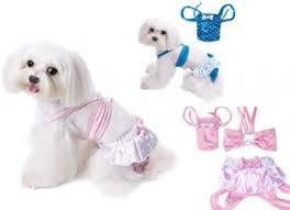 bagno per cani costumi da bagno cani tutto ze 24414